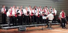 Kören klar att sjunga Ted Gärdestad 2012 Solist Thorolf Westerlund